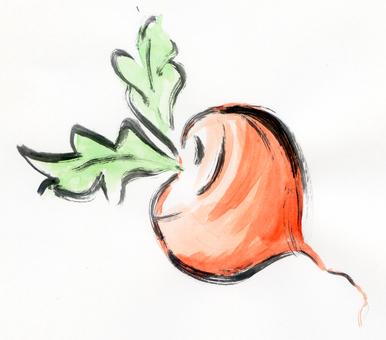 Mini radish, radish