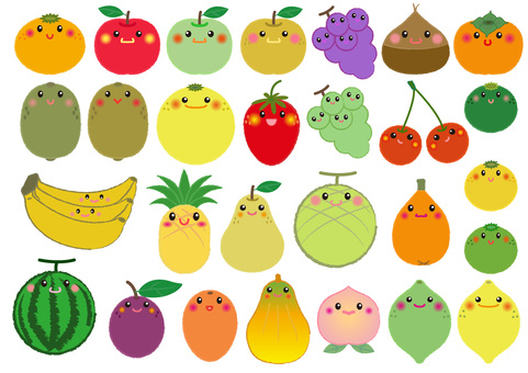 fruit_28 kinds of facial fruits 1