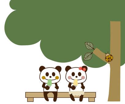 Panda -date 2