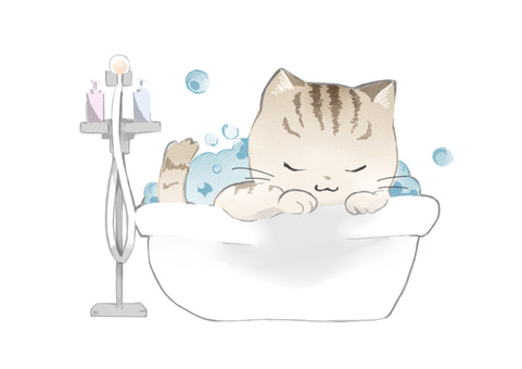 Bath cat tea tiger