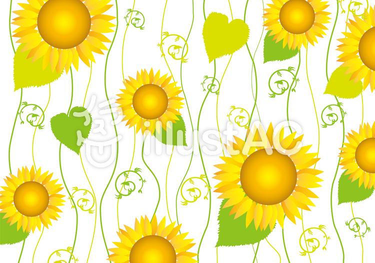 ひまわり夏植物花模様背景壁紙素材7月8月イラスト No 無料イラストなら イラストac