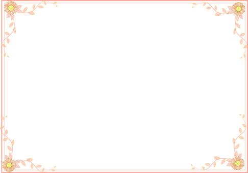 Gerbera's frame Orange