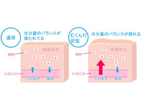 Mechanism comparison of swelling