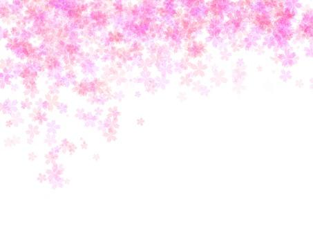 桜水彩背景1 透明