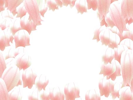 Yucca's flower