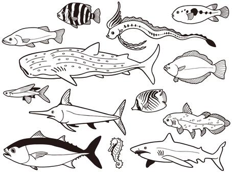 Seawater fish set