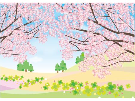 Sakura no Oka 1 (Completed)