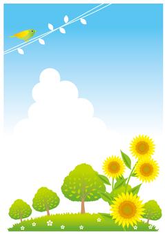 Sunflower hill landscape
