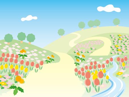 들판 (봄, 초여름)