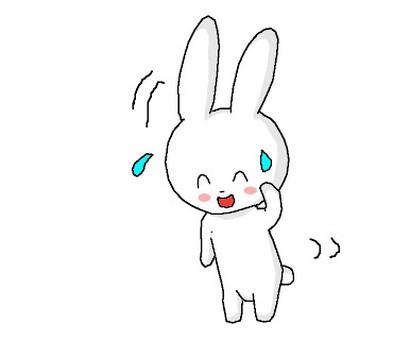 對不起,兔子