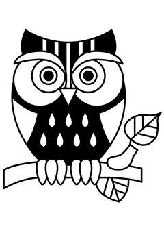 Owl 1c