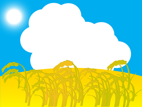 Ripe harvest 5 5 1600 x 1200 px