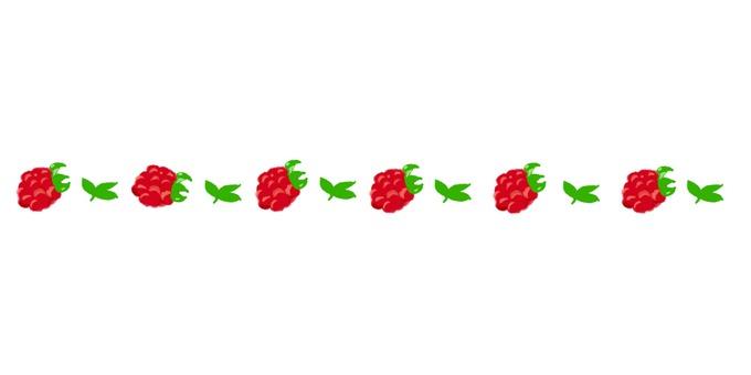 Delimiter (raspberry)
