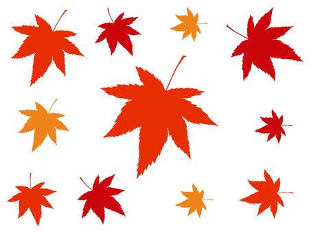Autumn leaves image