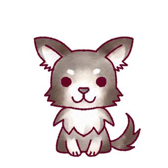 Chihuahuas (B & W)