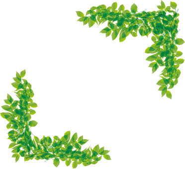 Fresh green leaf leaves Green frame framing decorative frame background
