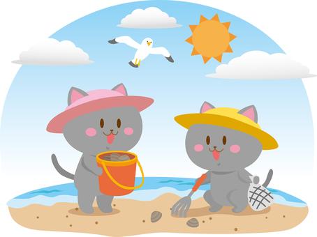 Cat clamor and cat