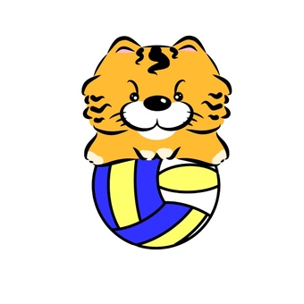 Cat and volleyball