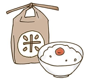 Rice bag and white rice