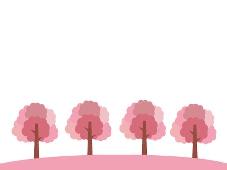 Sakura tree on the hill