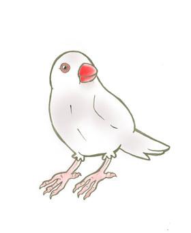 Stone bird (white)