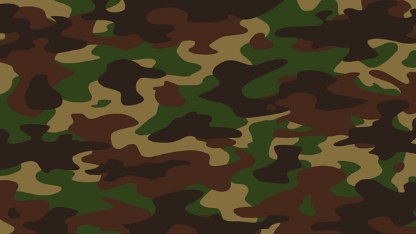 Camouflage texture pattern background green