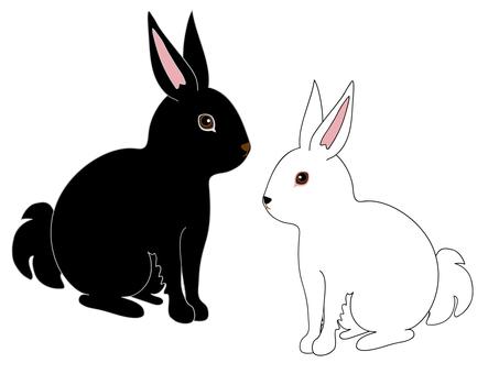 Usagi (white / black)