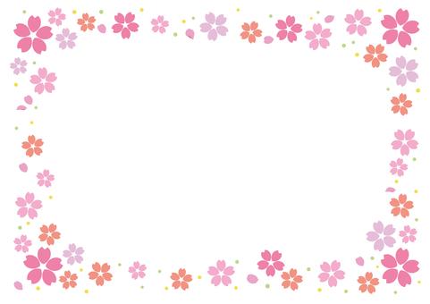 Cherry blossoms 84