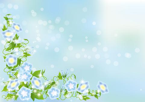 푸른 하늘 & 파란 나팔꽃 62