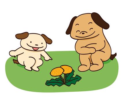 Dog and parent finding dandelion