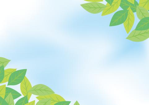 緑の葉のフレーム17