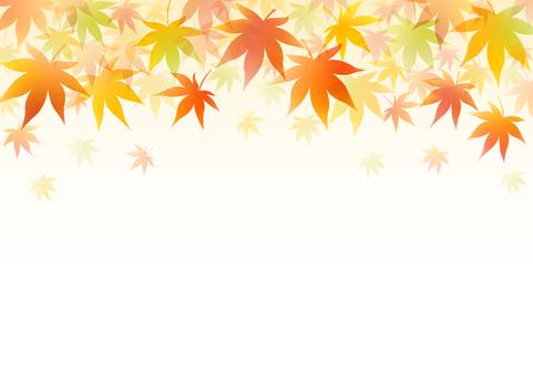 Autumn 179