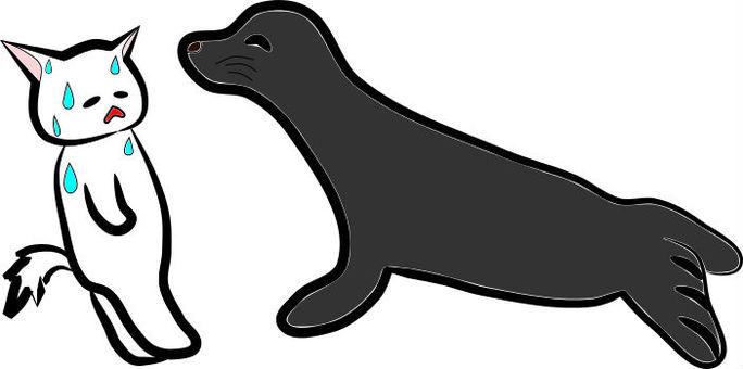 Nyanko and the fur seals