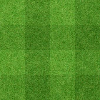 Grass pattern 6