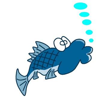 Fish 101