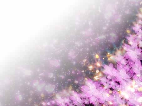 Sakuraguki Background 06