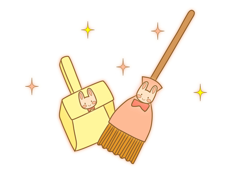 Country style broom and dust