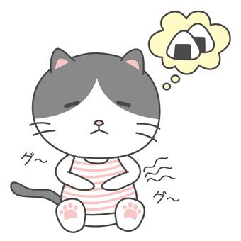 Hachiware cat chan belly peko