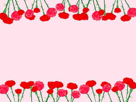 Carnation frame 03