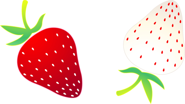 Red and white strawberries