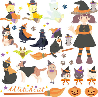 Witcher cat set assorted assorted