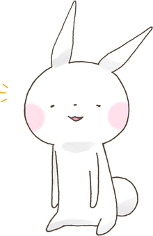 RUNRUN rabbit 141