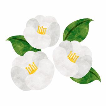 겨울의 꽃 / 흰 동백