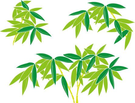 笹 · Bamboo