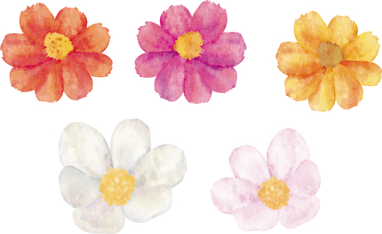 Watercolor painting flowers