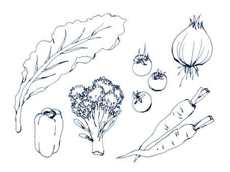 Vegetable fountain pen drawing
