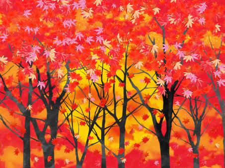 Autumn leaves sunset 5