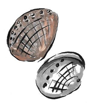Abalone shell (brush)