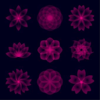 Brilliant flowers
