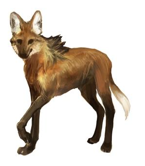 Vertical wolf